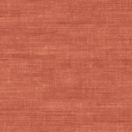 Arte Curiosa behang Canvas 24507