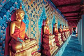 Papermoon Fotobehang Vlies Gouden beelden van Buddha 18346