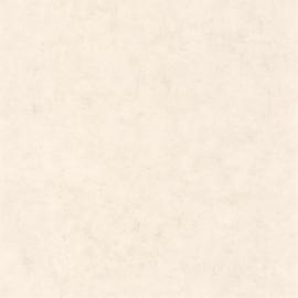 Caselio Béton behang BET 101481258
