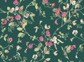 Cole & Son Botanical behang Sweat Pea 115/11033