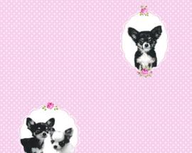 AS Creation Little Stars Hondjes behang 35851-1