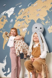 Caselio Our PlanetXL Panel World Map OUP 102032066