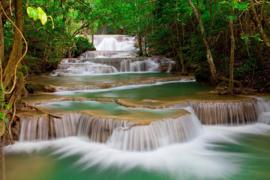 Papermoon Fotobehang Deep Forest Waterfall 97018