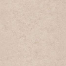 Caselio Béton behang BET 101491287