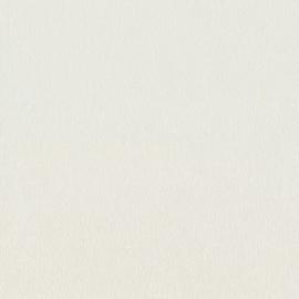 BN Zen behang Canvas 218691