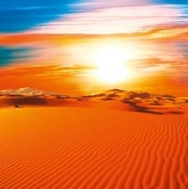 XXL Wallpaper Dune 0312-2