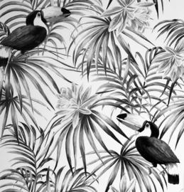 Arthouse Toucan Mono behang 298300