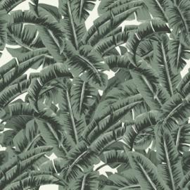 Esta Home Paradise behang Tropische Jungle Bladeren 139156