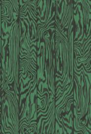 Cole & Son Curio behang Zebrawood 107/1001
