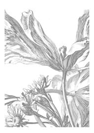 KEK Amsterdam Wonderwalls behang Engraved Flowers III WP-329