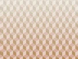 BN Cubiq Mural Fading Cube 200420 DX