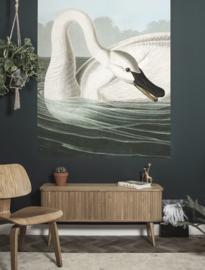 KEK Amsterdam Flora & Fauna behangpaneel Trumpeter Swan PA-001
