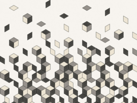 BN Cubiq Mural Faling Cube 200452 DX