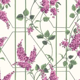 Cole & Son Botanical behang Wisteria 115/5013
