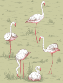 Cole & Son Icons behang Flamingos 112/11038