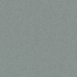 BN Grand Safari behang Leather 220508