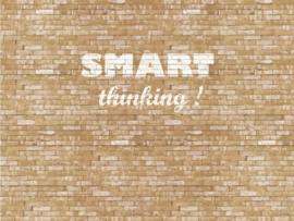 Eijffinger Wallpower Junior 364201 Smart Thinking XL