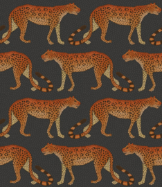 Cole & Son Ardmore Collection behang Leopard Walk 109/2008