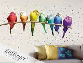 Eijffinger Wallpower Wonders Rainbow Budgies 321518