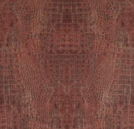 BN Curious behang 17957