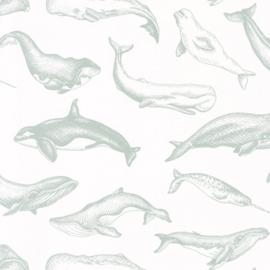 Caselio Sea You Soon behang Whale Done SYO 102797010