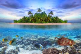 Papermoon Fotobehang Marine Life Maldives 97025