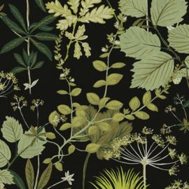 Khrôma Olivia behang Herbario Greenery OLI002
