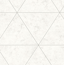 Dutch Restored Polished Concrete behang 24015