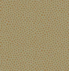 Cole & Son Ardmore Collection behang Senzo Spot 109/6029