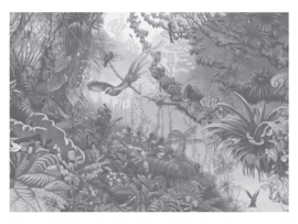 KEK Amsterdam Flora & Fauna behang Tropical Landscapes WP-605