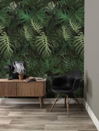 KEK Amsterdam Flora & Fauna behang Monstera WP-500