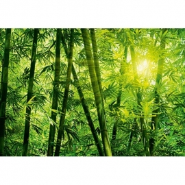 Idealdecor Bamboo Forest 123