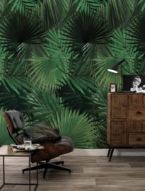 KEK Amsterdam Flora & Fauna behang Palm WP-501