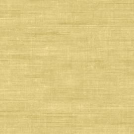 Arte Curiosa behang Canvas 24509