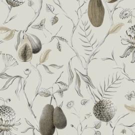 Khrôma Cabinet of Curiosities behang Papaya Desert CAB601