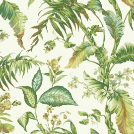 York Wallcoverings Ashford Tropics behang AT7091 Fiji Garden