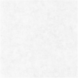 Caselio Béton behang BET 101489000