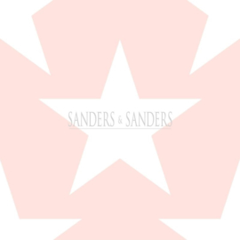 Sanders & Sanders Trends & More behang 935259