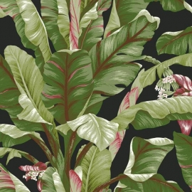 York Wallcoverings Ashford Tropics behang AT7071 Banana Leaf