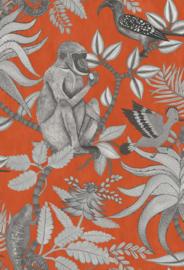 Cole & Son Ardmore Collection behang Savuti 109/1001