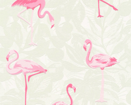 AS Creation Boys and Girls 6 behang  Flamingo 35980-1