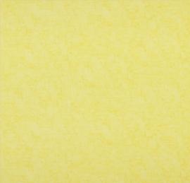 BN Van Gogh behang 17131