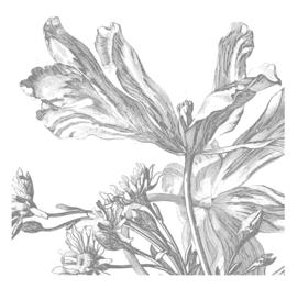 KEK Amsterdam Wonderwalls behang Engraved Flowers III WP-333