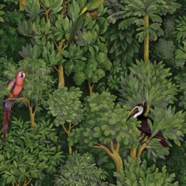 Dutch First Class Amazonia behang Botanist Green 91250