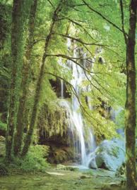 Eijffinger Wallpower Junior 364134 Forest