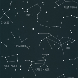 Caselio Our Planet behang Constellations OUP 10916918
