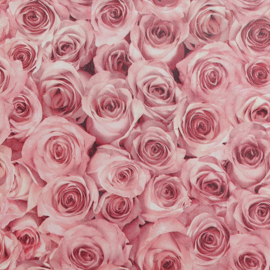 Arthouse behang Rose Wall Raspberry 297108