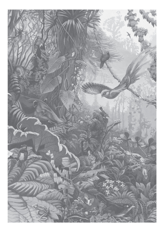 KEK Amsterdam Flora & Fauna behang Tropical Landscapes WP-603