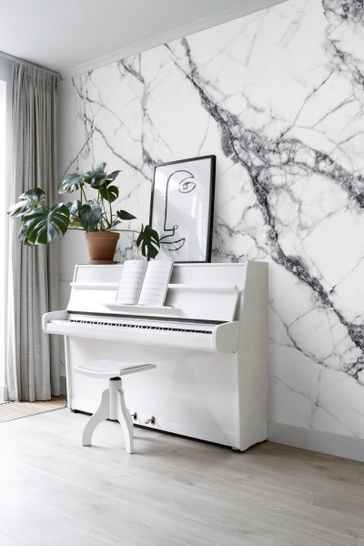 Esta Home Black & White - with a splash of gold behang PhotowallXL Wall Marble 158942