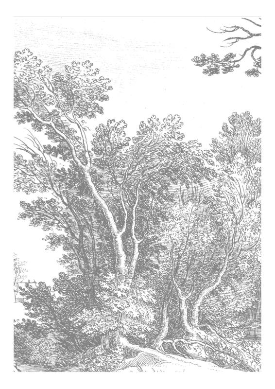 KEK Amsterdam Landscapes & Marble behang Engraved Landscapes WP-316